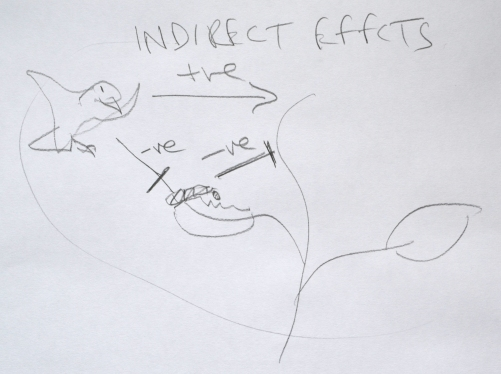 INdirect Effects